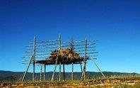 云南印象之香格里拉自然生态的净土