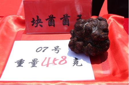 """号称""""黑色金刚石""""的块菌,是野生菌极品,它与鱼子酱、鹅肝酱同被称为三大珍品"""