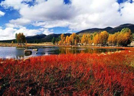 稻城亚丁旅游风景区-天凉好个秋 正是西部旅游最佳时节图片