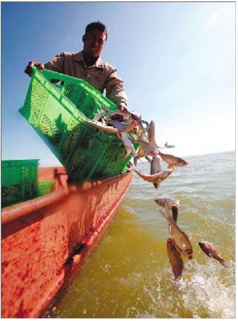 市民竞相报名放鱼护滇池