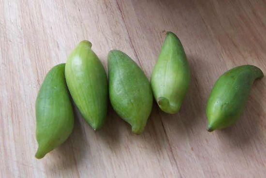 牛角瓜怎么吃_小雀瓜 小雀瓜做法_龙太子供应网