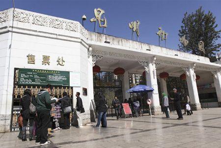 昆明动物园售票处,游客在排队买票 记者杨帆/摄