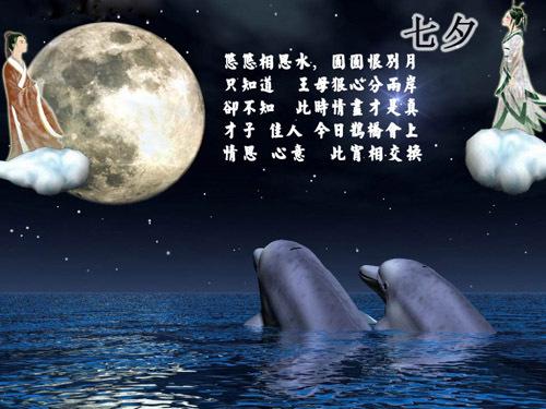 中国的情人节