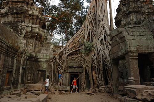 被原始森林吞没的庙宇