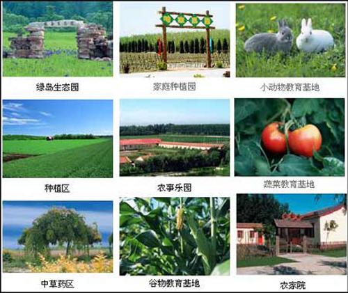 北京波峰绿岛生态观光园有1100亩园地