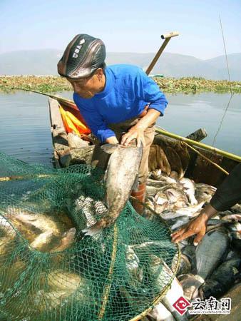 异龙湖开渔节