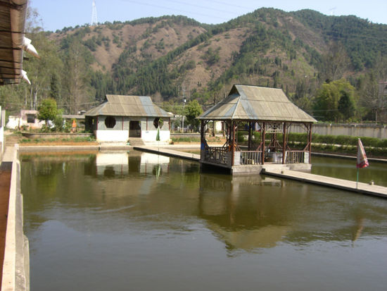 既然是渔村当然少不了水啦