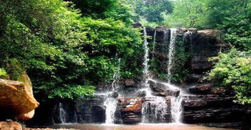 嵩明县长松园果园:沐浴森林