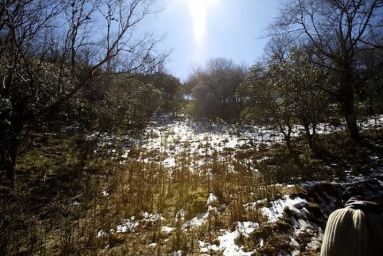 轿子雪山风景区和东川红土地就只相隔了97公里的路程