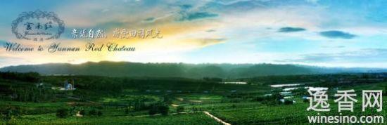 云南红葡萄酒倡导亲近自然,感受田园风光