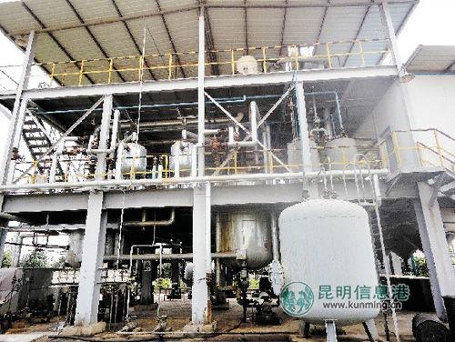 盈鼎公司的生物柴油生产线已被迫停产 本版图片除署名外 受访者供图