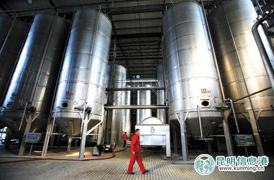 云南红酒庄地下酒窖贮酒罐群 资料图片