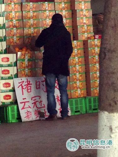 """一位市民正在水果摊前选购所谓""""褚橙"""" 实习生孙荣华/摄"""