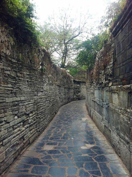 长巷(图片来源:网络)