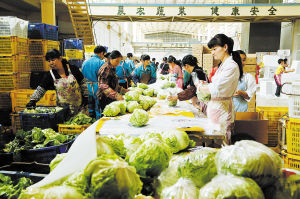 工人在筛选并包装蔬菜 王小琴 摄