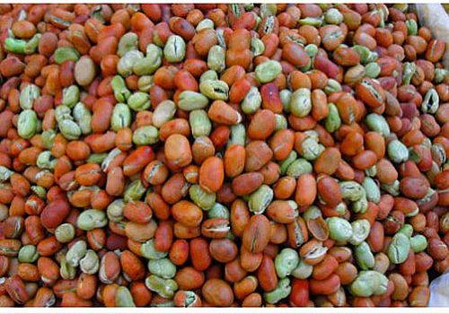 保山绿豆(图片来源:新浪微博)