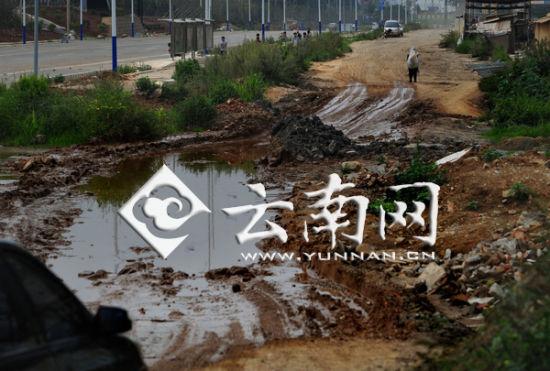 大坑形成了一个水塘 记者 江洋 摄