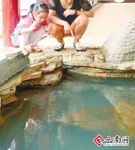 一对母女在观赏珍珠泉里冒出的水泡 实习生 李蓉 摄