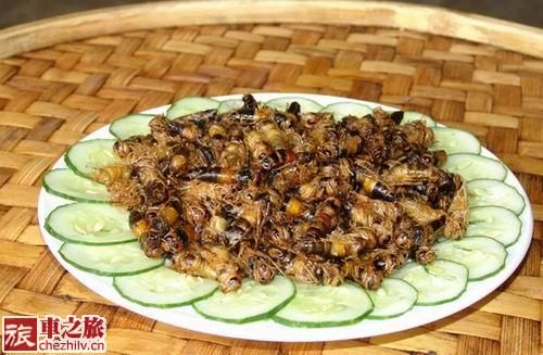 傣味昆虫宴(图:旅车之旅)