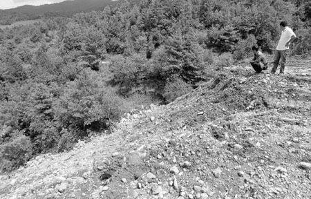一处林区被工程弃土掩埋