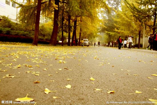 秋季(图:昵图网)